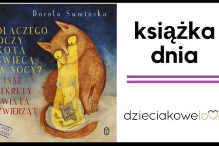 dlaczego oczy kota swiecą w nocy książka dla dzieci