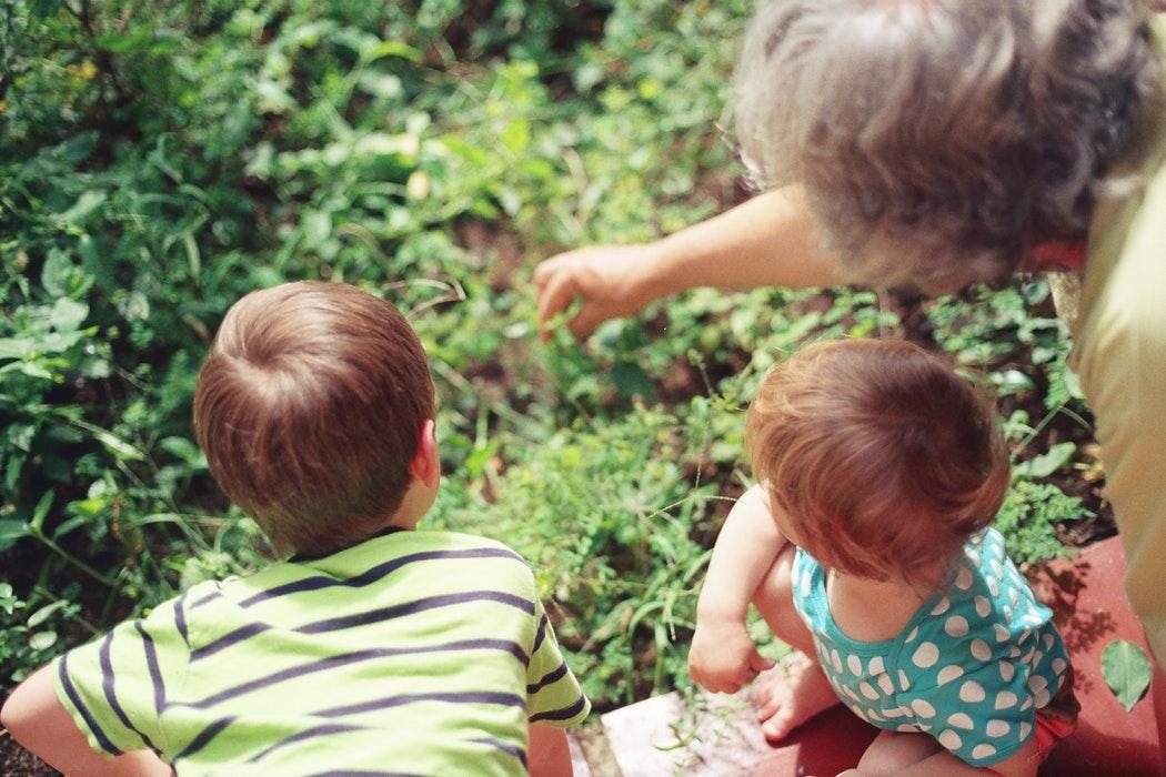 prezent na dzień babci prezent na dzień dziadka