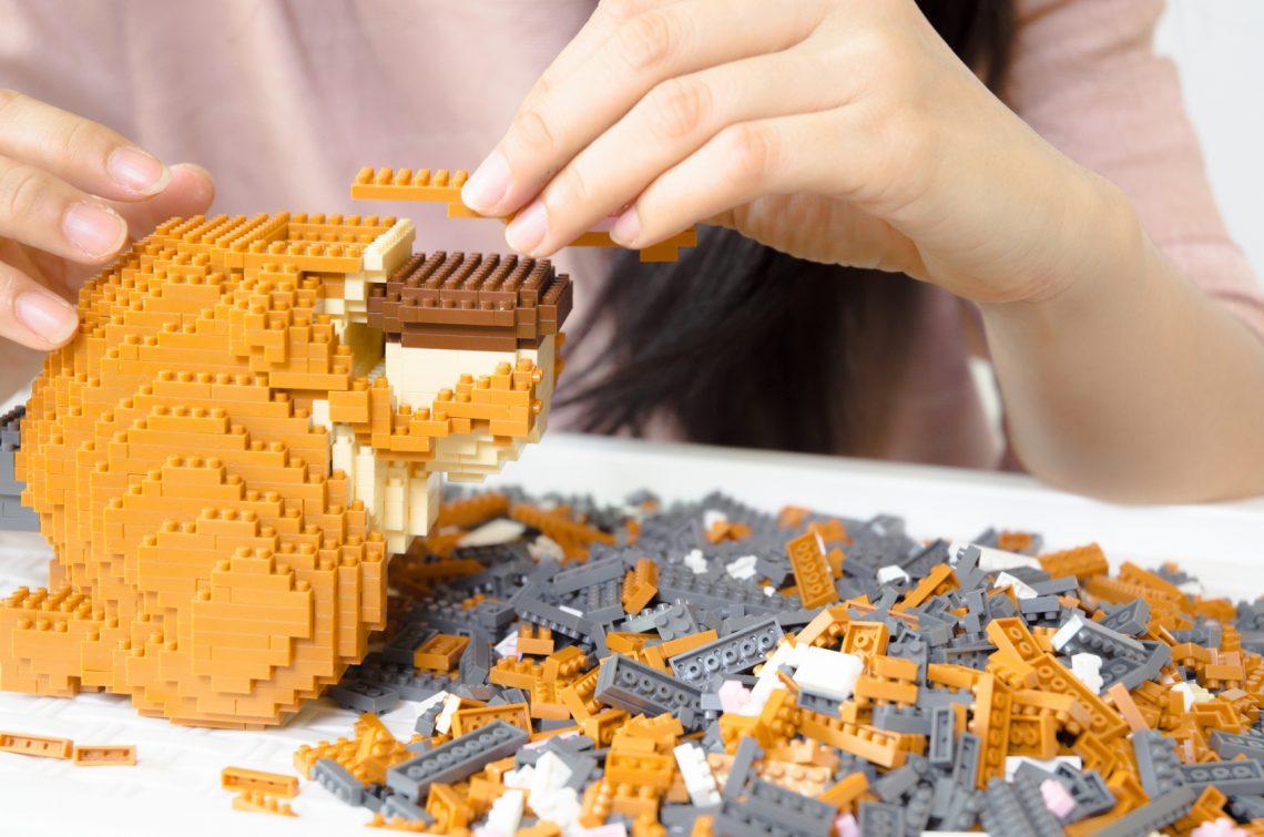 obóz lego dla dzieci